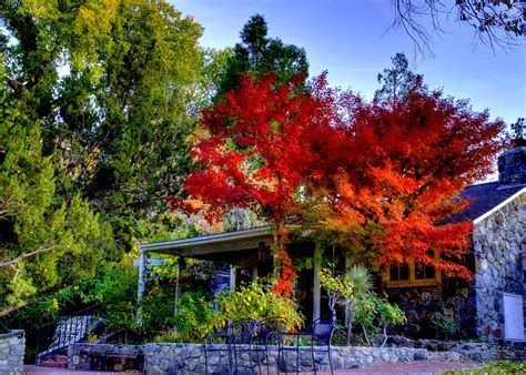 california fall colors california fall colors easy l a getaway to valyermo s