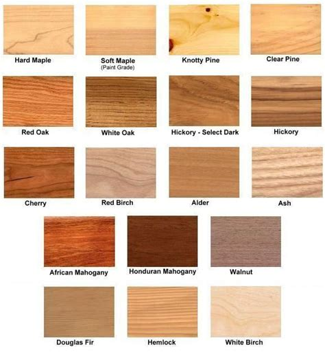 cabinet wood types and costs common wood types raw wood types no stain added