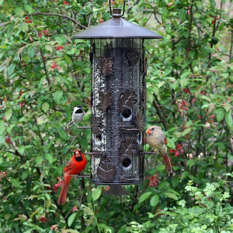 pet 174 squirrel be 174 iii feeder for birds
