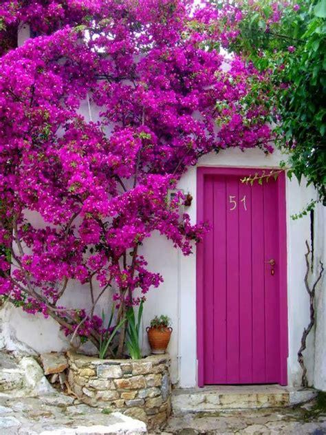 Front Door Garden 50 Modern Front Door Designs