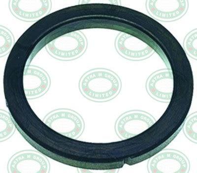 Rancilio Filter Holder Gasket 1186812 rancilio automatic z9 z11