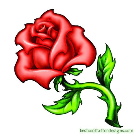 cool rose tattoo designs flash best cool designs