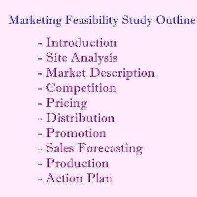 restaurant feasibility study template 17 best images about feasibility study on