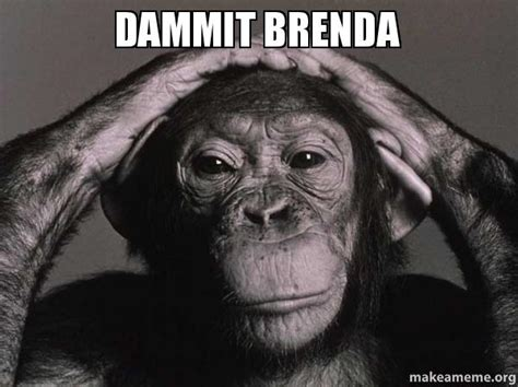 Brenda Memes - dammit brenda make a meme