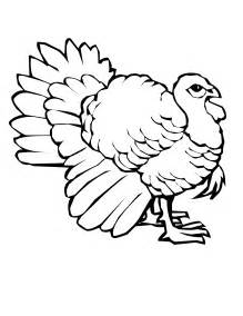 turkey color free printable turkey coloring pages for