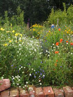 Wilder Garten Ideen by Ideas Para El Jardin Haveideer On 780 Pins