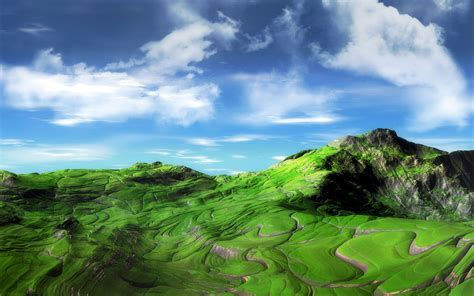 green wallpaper the range the range wallpaper view all wallpapersafari
