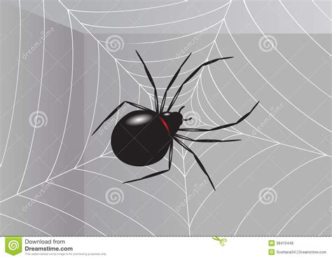 Dreams About Spiders Falling From The Ceiling by Spider Royalty Free Stock Photos Image 38410448