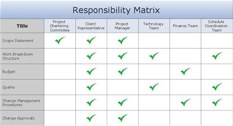 Responsibility Matrix Template the plan corrective planning person