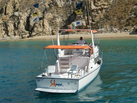 boat crew finder cabo san lucas sport fishing charter boat selection el