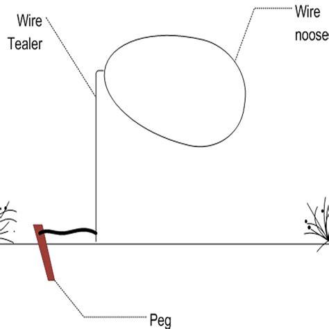 figure 4 trap diagram figure 4 deadfall trap diagram best free home design