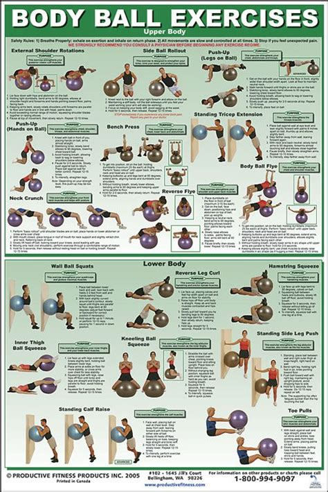 weekly workout fitness pinterest gossip news body ball exercises upper and lower body workout go to