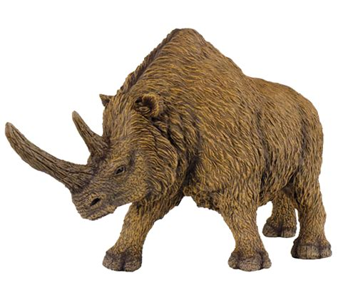 imagenes animales prehistoricos rinocerontes grandes animales extinguidos