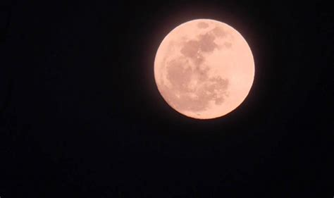 pink moon april pink moon are you ready to witness a spectacular sight this april india com