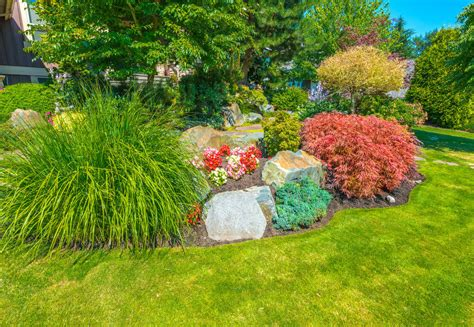 great front yard trees 101 front yard garden ideas awesome photos