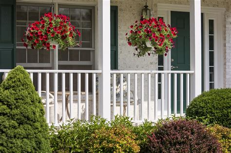Porch Hanging Plants clever ideas for decorating your porch corner