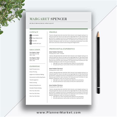 creative resume templates for mac creative resume template word 3 page cv template