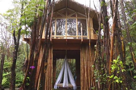tiny house hawaii she built a second tiny house in hawaii for just 10 000 and it s magical tiny