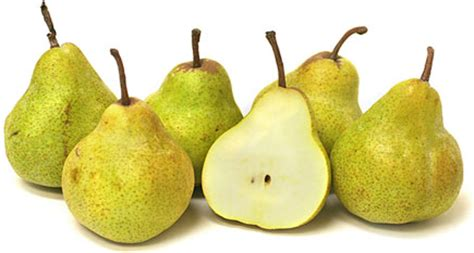 Packham Pears Information, Recipes and Facts
