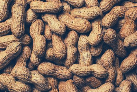 selective focus photograph  plate  peanuts
