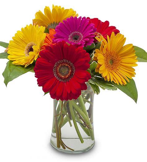 Best Seller Flower sarniaflowers best selling flowers