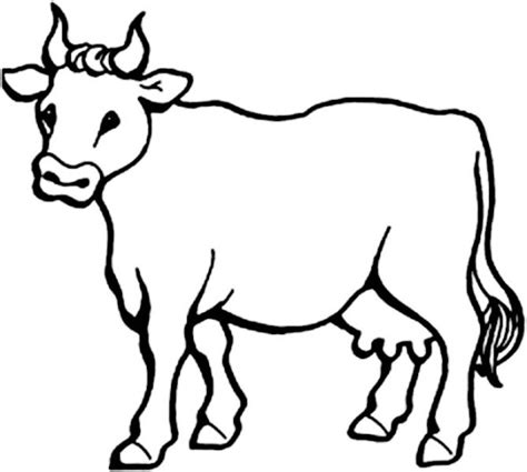 picture of milch cow coloring page netart