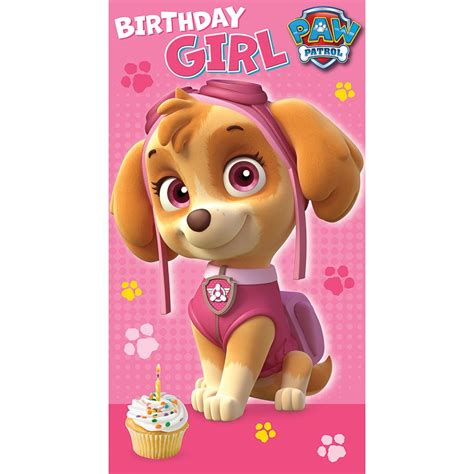 printable birthday card paw patrol paw patrol birthday card greeting cards b m