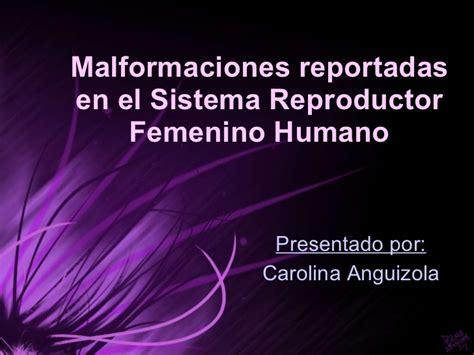 imagenes reales aparato reproductor femenino malformaciones en el sistema reproductor femenino