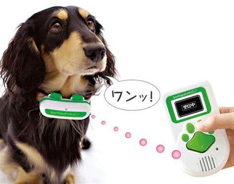 puppy translator bowlingual bark translator