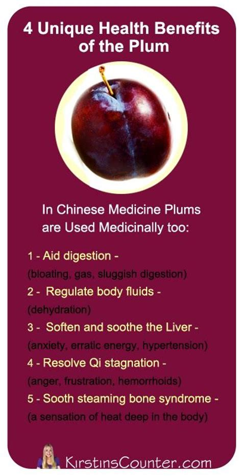 Plumb Benefits by Best 25 Plum Fruit Ideas On Cherry Fruit