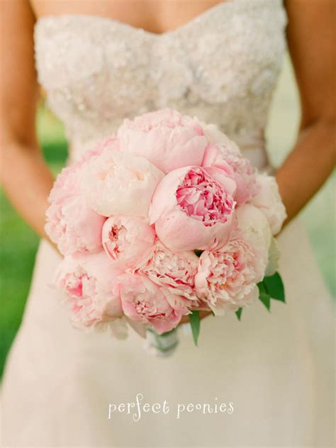pink peonies wedding bouquet bridal pale pink peonies bouquet