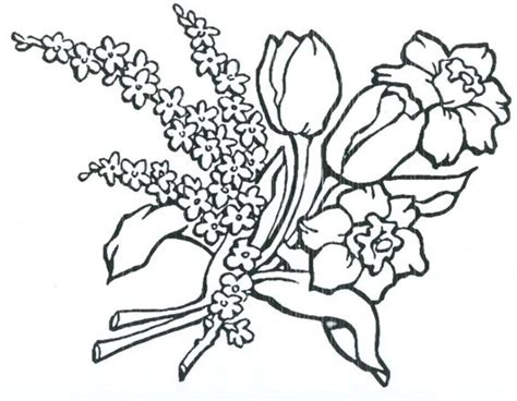 zinnia flower coloring page free zinnia flower coloring pages