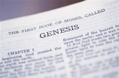 genesis book of the bible lucid frenzy junior being in the lord s sight