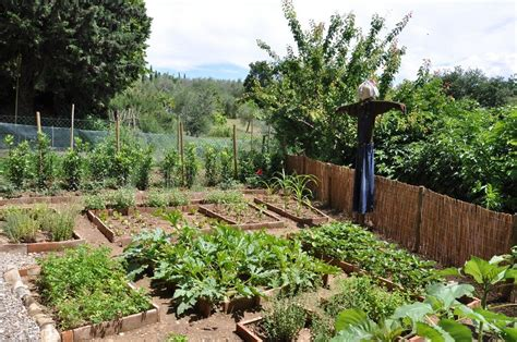 information on when to plant your vegetable garden