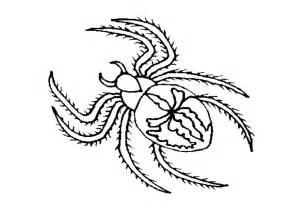 spider coloring page black spider coloring pages of animals