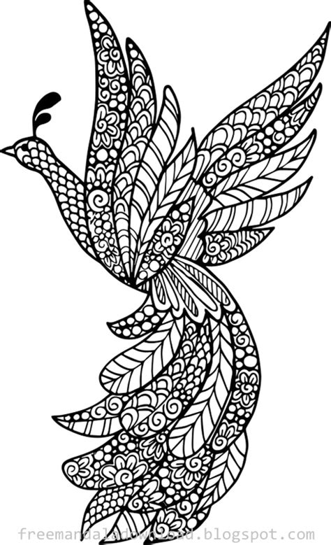 bird mandala coloring pages vogel mandala design pdf bird mandala