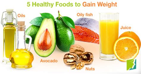 healthy fats for weight gain gain weight healthily