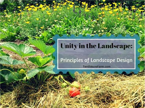 landscape design principle unity tenth acre farm