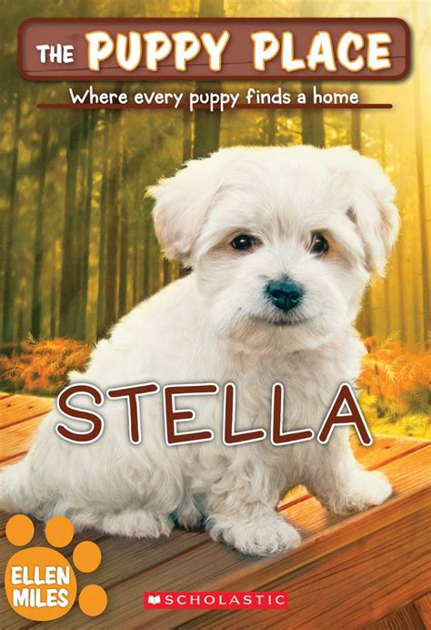 puppy places stella by scholastic