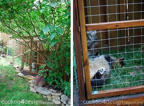 cat enclosures diy easy diy cat enclosure cuckoo4design
