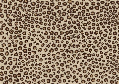 Cheetah Print by The Difference Between Leopard And Cheetah Print Leslie