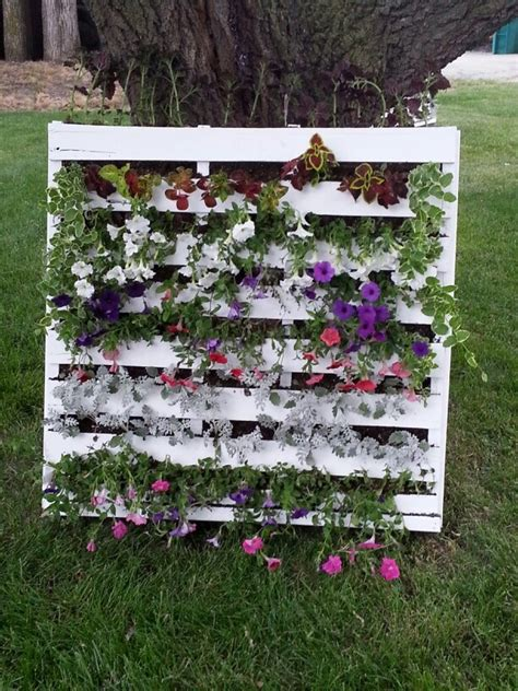 pallet flower bed 14 best images about flower beds on pinterest gardens