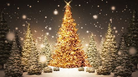 1366x768 christmas tree desktop pc and mac wallpaper