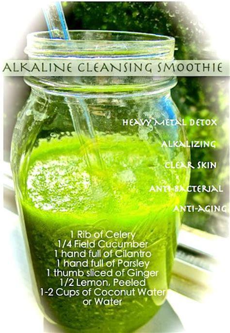 Cilantro Kidney Detox Recipe by Detox Drink 1 Celery 1 4 Cucumber 1 Handful Cilantro 1