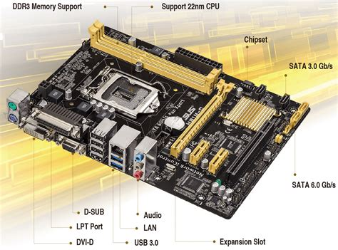 Motherboard Asus H81m C Socket 1150 Limited asus h81m c asus mainboard socket 1150 at reichelt elektronik
