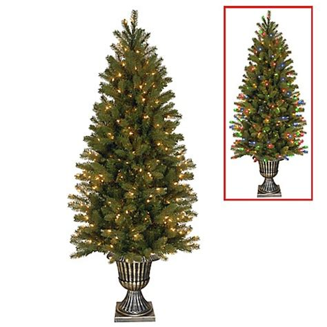 5 or 6ft real feel christmas trees at bargain prices buy feel real 174 6 foot downswept douglas fir pre lit tree with 300 dual led lights from