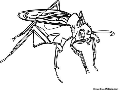 Mosquito Coloring Pages Mosquito Coloring Page