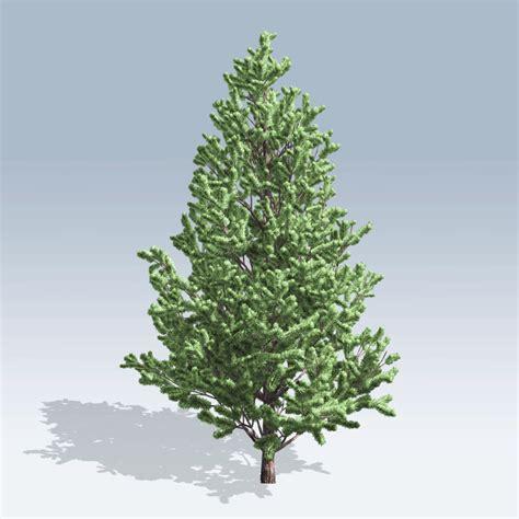 scotch pine trees scotch pine v6 speedtree store