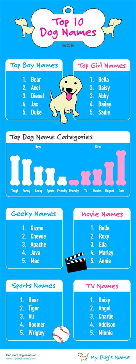 full house dog name best 25 dog names ideas on pinterest dogs names list puppy names and boy puppy names