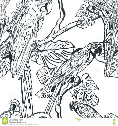 jungle pattern black and white vector seamless pattern with tropical parrot birds on tree